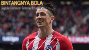 Peforma Fernando Torres